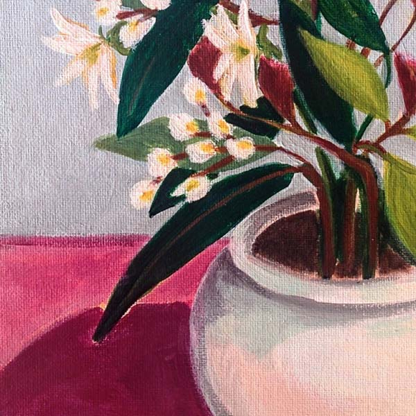 'Flowers from Montserrat' by Marisa Añón Frau