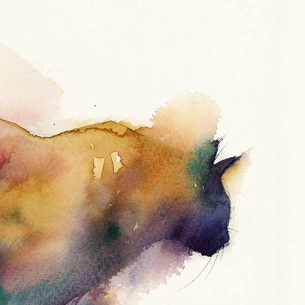 'Kora' by Sophie Rodionov