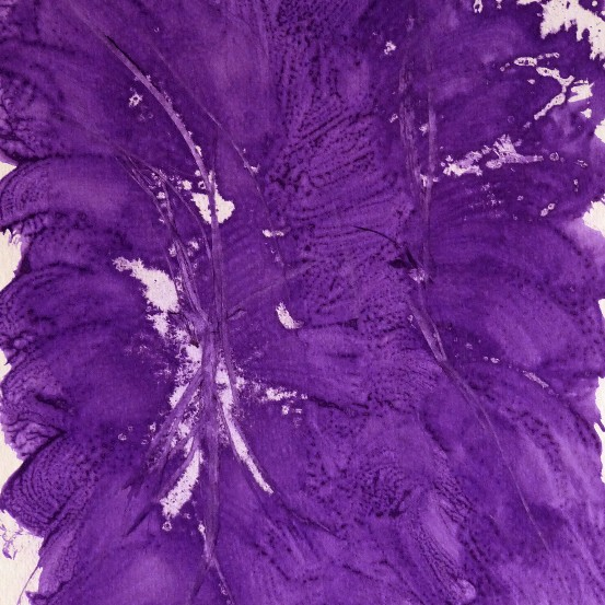 Study in Purple 3