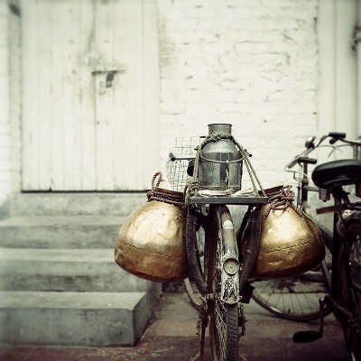 The bicycle carrier by Nadia Attura
