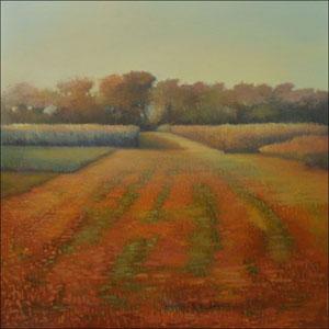 wicken fen meadows