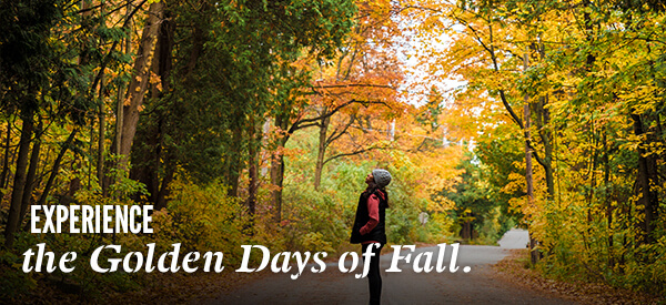 Experience the Golden Days of Fall