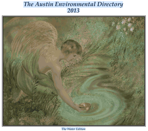 2013 Austin Environmental Directory - Water Issue - cover art