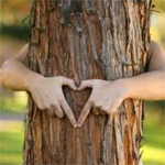 Tree Heart - Arbor Day