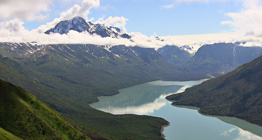 Baker Institute Update: Oil, policy and an occasional moose: Energy Forum interns in Alaska