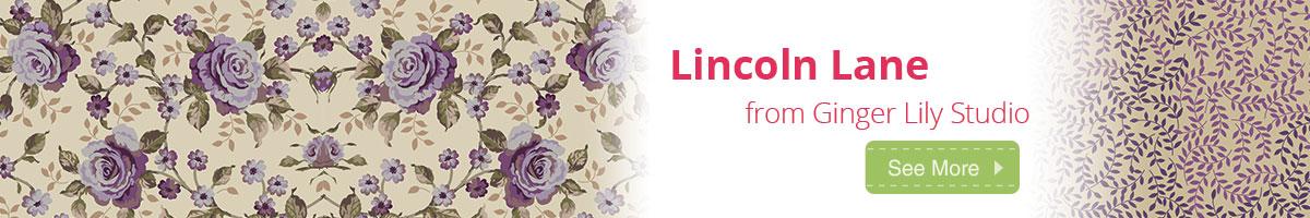 See Lincoln Lane