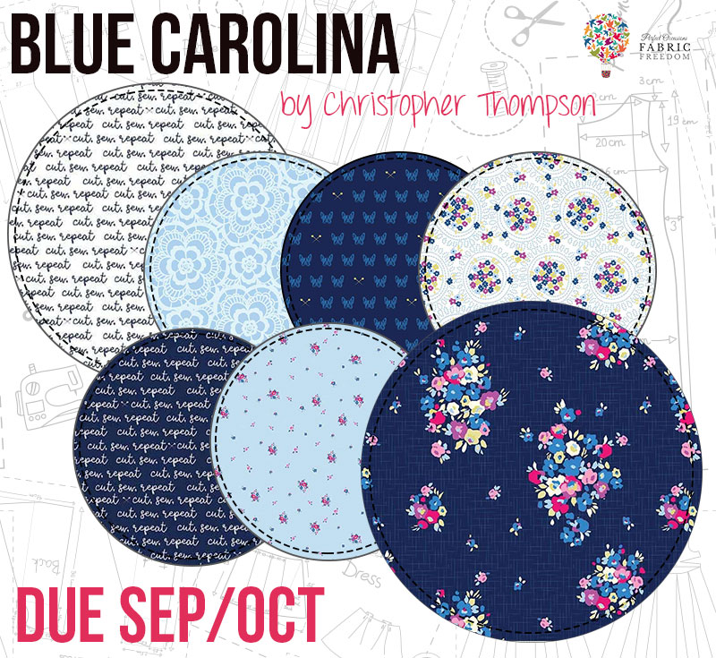 BLue Carolina by Christopher Thompson for Fabric Freedom