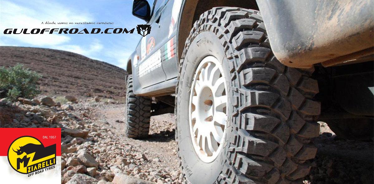 Neumáticos TT Ziarelli