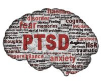 This image shows the outline of a brain, with a word cloud on the inside that includes the words PTSD, anxiety, fear, disorder, hypervigiliance, risk, traumatic.