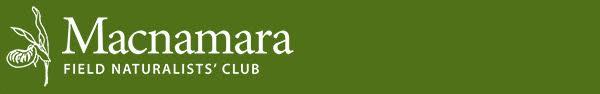 Macnamara Club