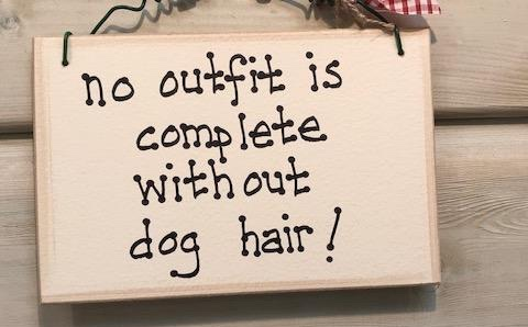 Dog Hair Sign