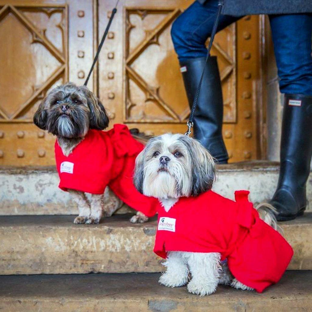 Dog Robes