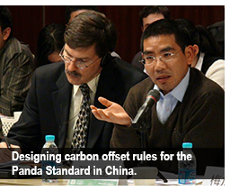 Designing carbon offset rules for the Panda Standard in China