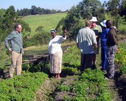 Winrock Essential Oils Project in South Africa