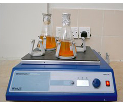 Tissue Culture Laboratory at BUITEMS Upgraded to Improve Capacity in Balochistan