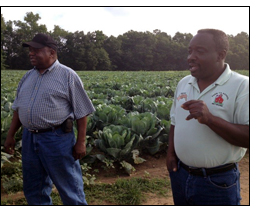 Winrock's Wallace Center Increasing Farmer Success in Local Food Markets in Deep South