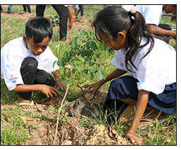 SFB project participates in Cambodia's arbor day activities.