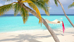Nyati Safari & fx Mauritius