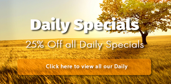 daily specials - 25% off