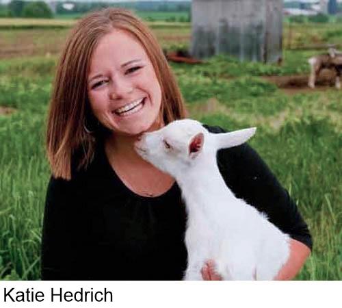Katie Hedrich