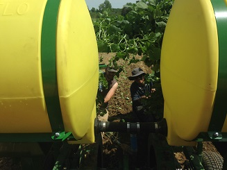 a photo of our new transplanter plus farm crew members Alex and Inti, view from the tractor driver