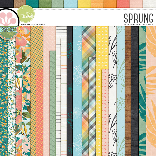 https://the-lilypad.com/store/Sprung-Papers.html