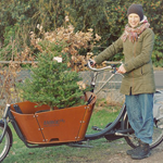 kerstboom in fiets