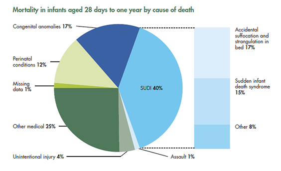 Mortality in infants aged 28 days to one year by cause of death pie graph