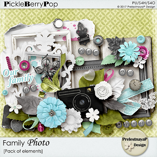 Time for September Pickle Barrel - New Family photo Collection and new Freebie!