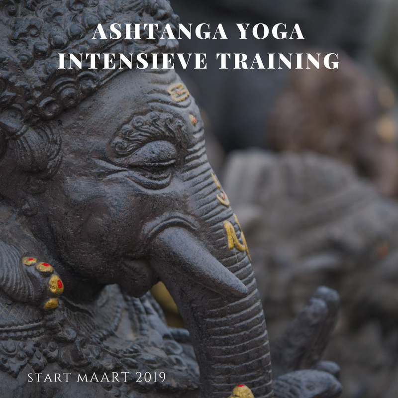 Ashtanga Yoga Intensieve Training
