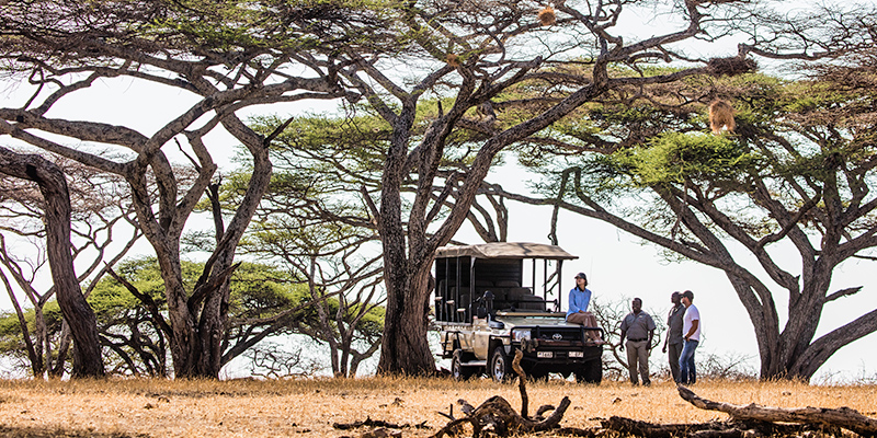 Experience the Mwiba Wildlife Reserve through Mila