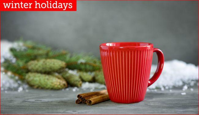 Winter image with mug and cinnamon