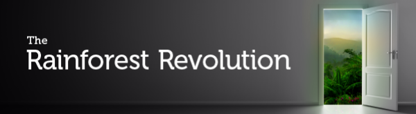 The Rainforest Revolution