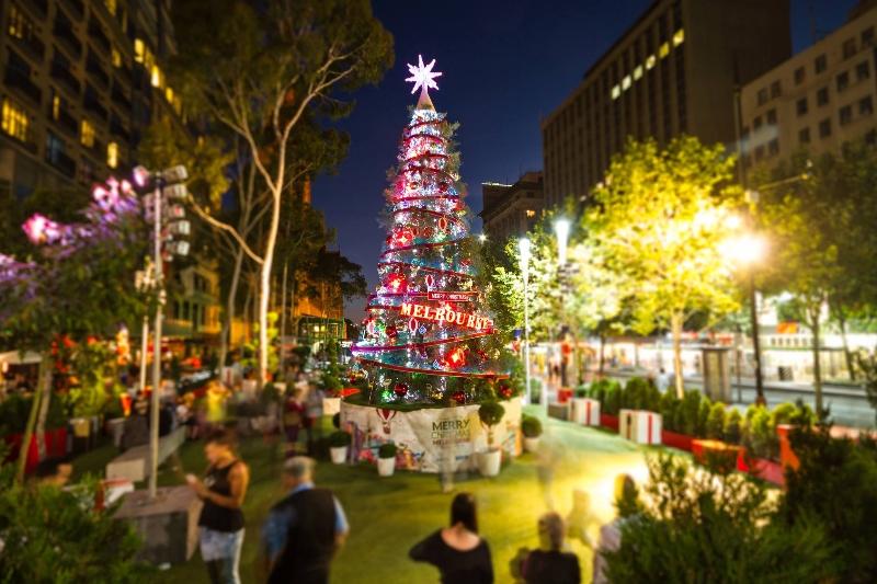 タウンホールでクリスマス・ライトアップ