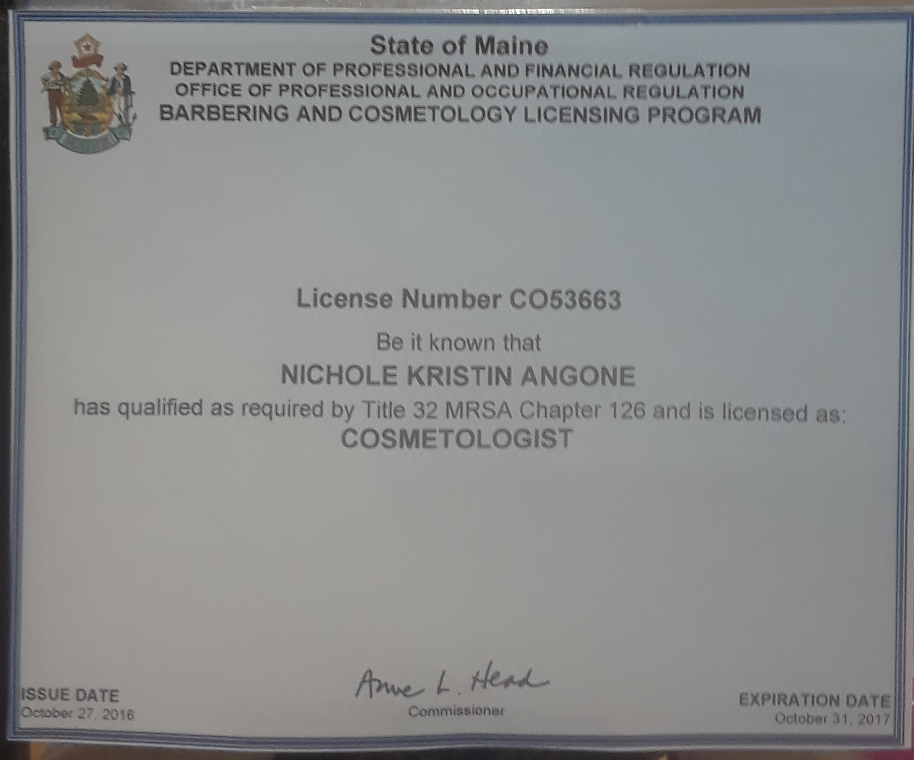 Nichole's Cosmetologist License