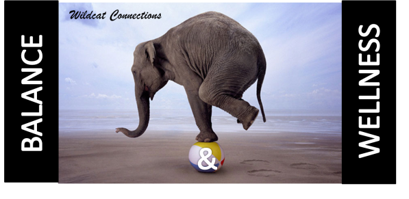 Image of elephant balancing on a beach ball, with a beach background. Text: Wildcat Connections. Balance & Wellness