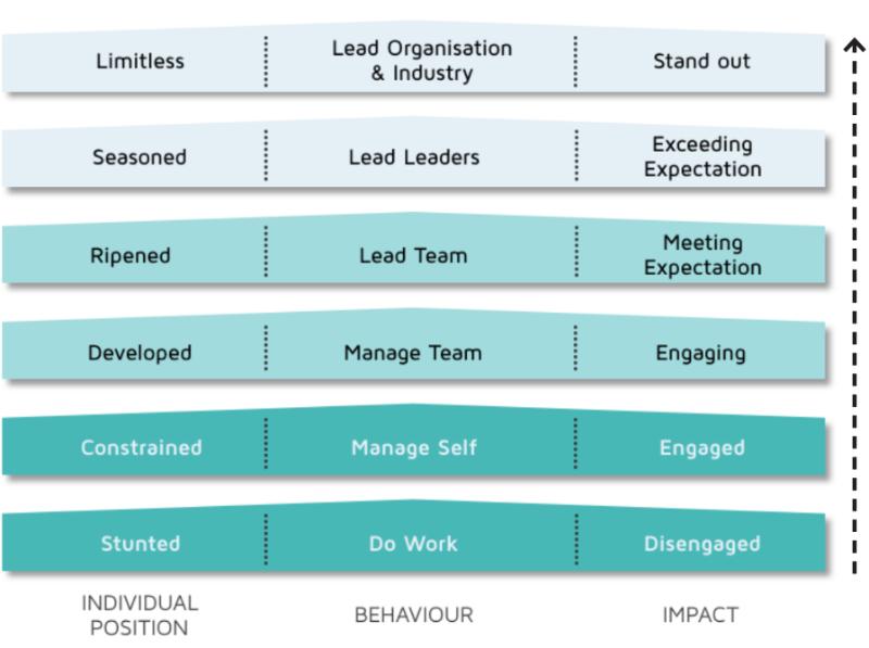 Limitless Leadership Ladder