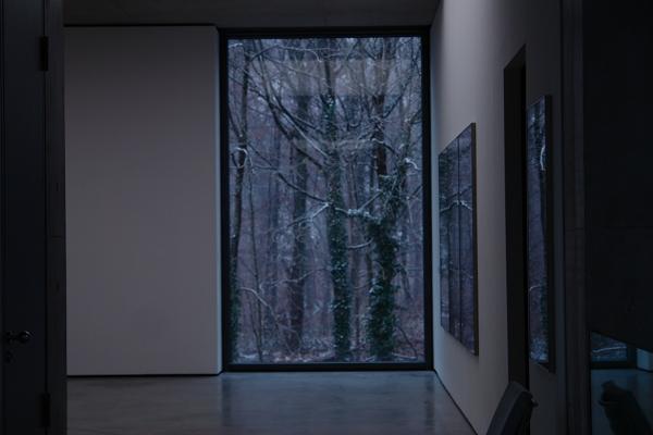 Museum der Moderne, window, November 2010