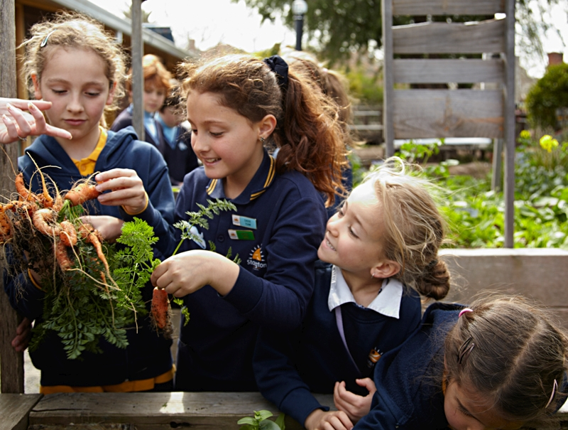 Kids learn how to Garden Carrots.