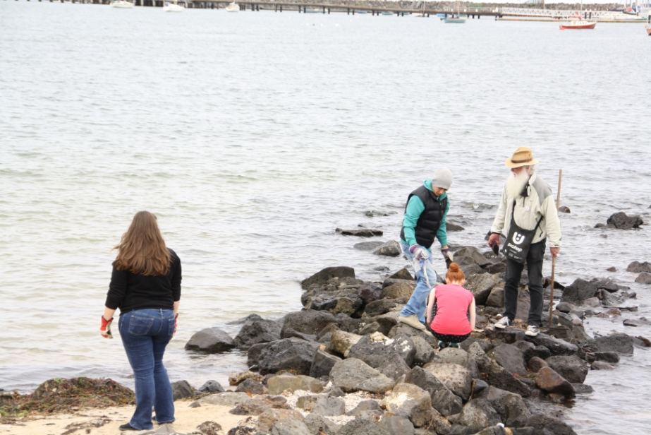 Clean up the Breakwater with the Baykeeper