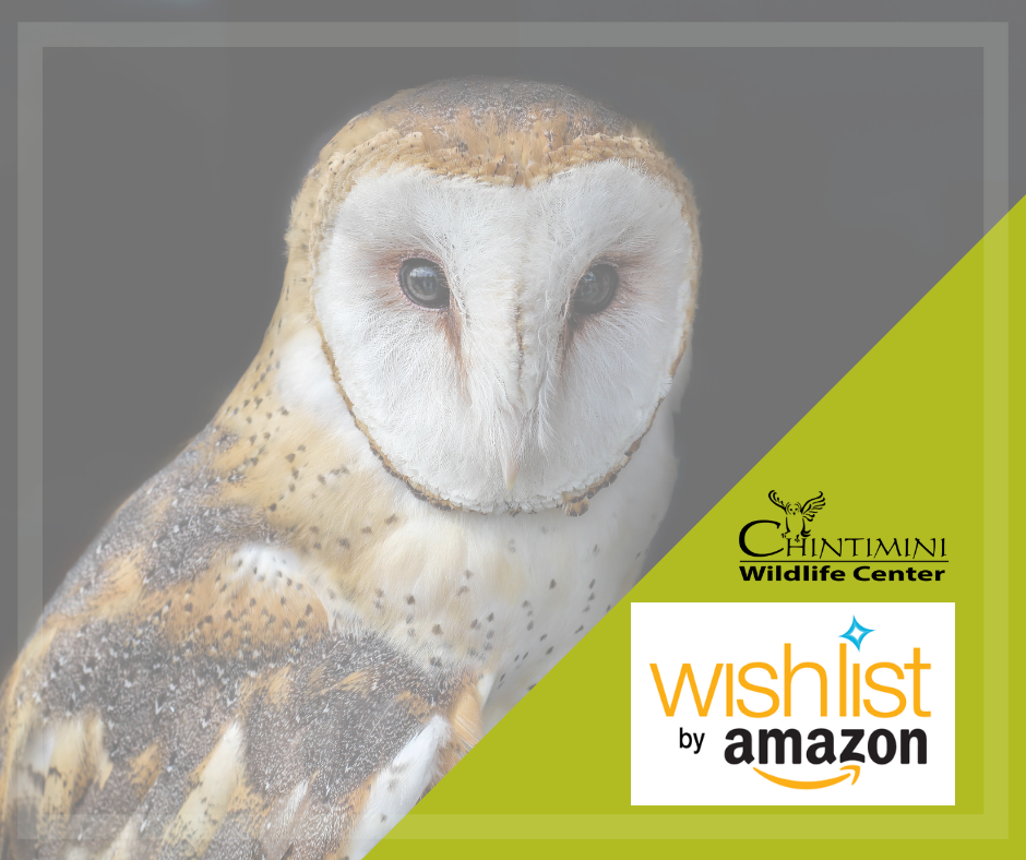 View the CWC Amazon Wishlist!