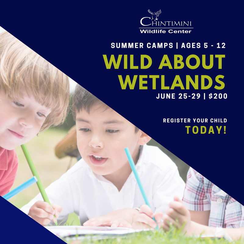 Wild About Wetlands, June 25-29, $200