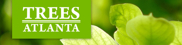 Trees Atlanta: a non-profit dedicated to planting and conserving trees.