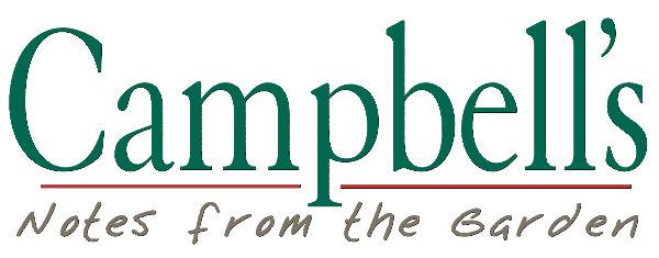 Campbell's Nursery Logo