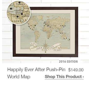 Shop Happily Ever After Push-Pin World Map