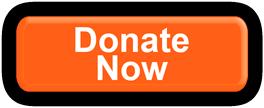 Donate Now EduMais Button
