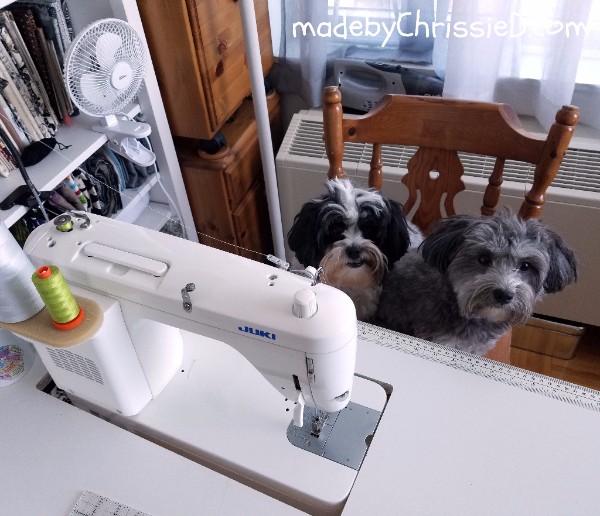 Tatty & Watson learn to sew - www.madebyChrissieD.com