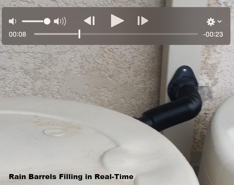 Rain Barrels Filling