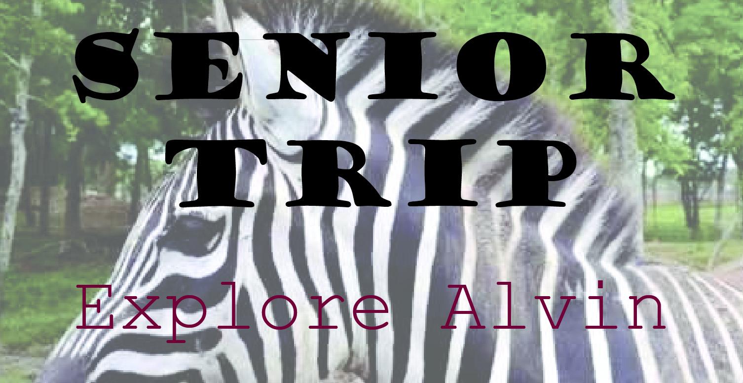 Senior Trip- Alvin