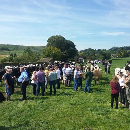 Free Range Dairy | Yorkshire Event